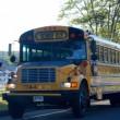 150507_schoolbus